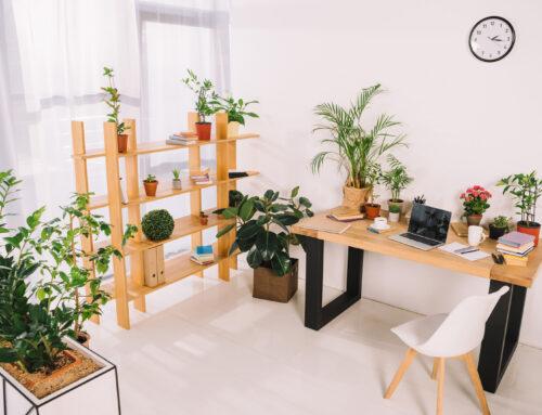 5 styles de bureau côté jardin
